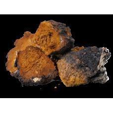 Чага березовый гриб (Inonotus obliquus)  50гр.