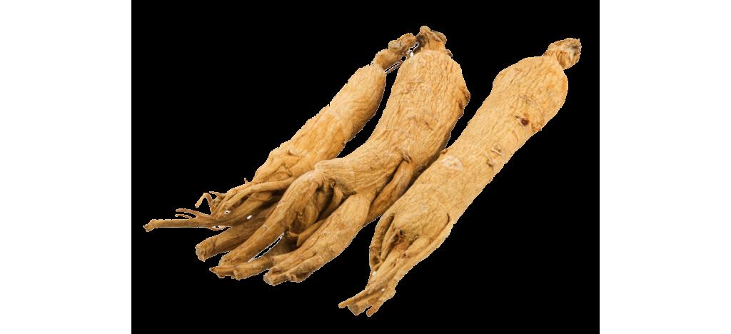 Купить Женьшень сухой корень  от 25гр