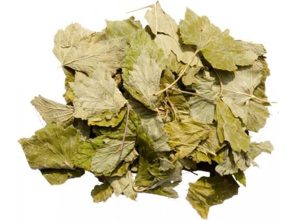 Береза лист (Bétula leaf) 50 гр.
